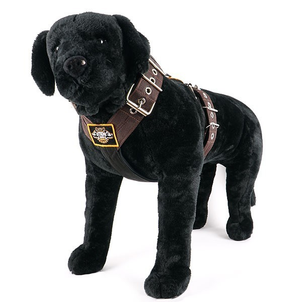 Dog harness 2 inch brown by extreme dog gear