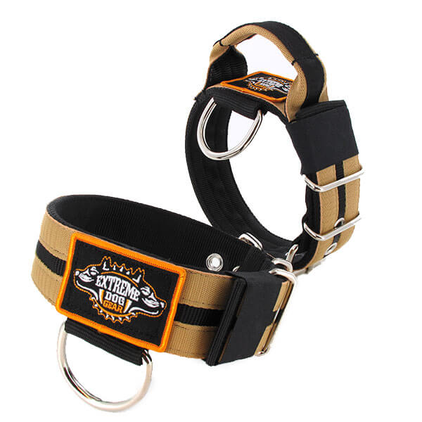 Double Sand custom dog collar 2 inch 5cm with handle extreme dog gear