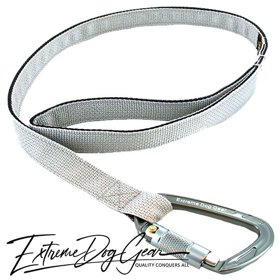 strong dog leash grey lead