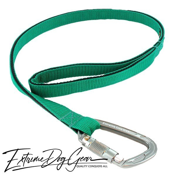 Strong Nylon Dog Leash Kelly Green