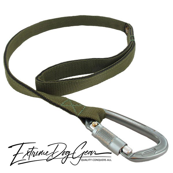 Strong Nylon Dog Leash Olive Green