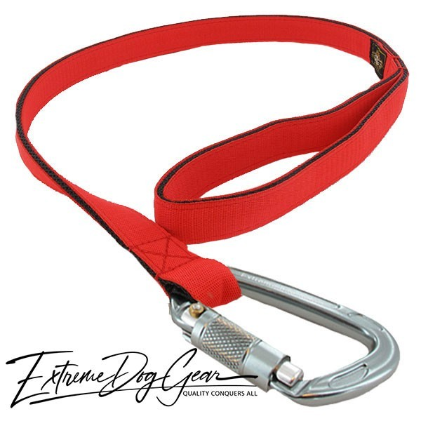Strong Nylon Dog Leash Tomato Red