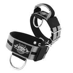Custom Dog Collars 2 inch extreme dog gear