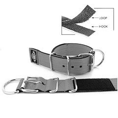 Kennel Dog Collars Keeper 2 inch by extreme dog gear