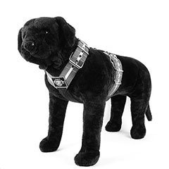 Custom Dog Sport Harness 5cm (2 inch)