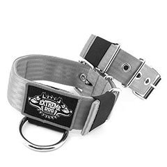 Custom Old school Dog Collars 2 inch extreme dog gear
