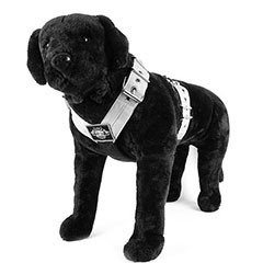 Dog Sport Harness 5cm (2 inch)