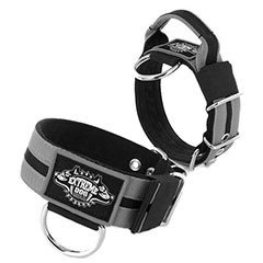 Collars by Extreme Dog Gear