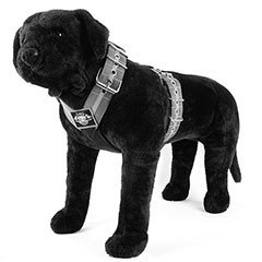 Harnesses by Extreme Dog Gear