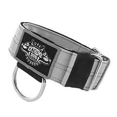 Heavy Duty Dog Collars 5cm (2 inch)