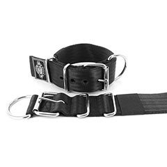 Kennel Dog Collars 2 inch by extreme dog gear