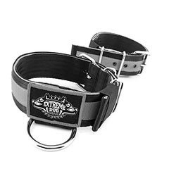 Puncher Dog Collars 2 inch by extreme dog gear