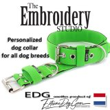Apple Green Standard or Personalized Embroidered Dog Collar 2 inch - 5cm