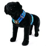 Custom dog harness 2 inch double stripe blue stripe by extreme dog gear