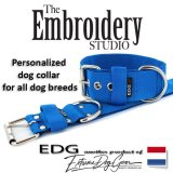 Dutch Blue Standard or Personalized Embroidered Dog Collar 2 inch - 5cm