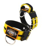 Double Yellow custom dog collar 2 inch 5cm with handle extreme dog gear