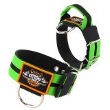 Double Apple Green custom dog collar 2 inch 5cm with handle extreme dog gear