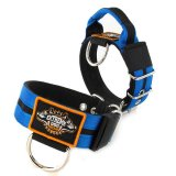 Double Blue custom dog collar 2 inch 5cm with handle extreme dog gear