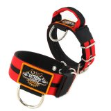Double Red custom dog collar 2 inch 5cm with handle extreme dog gear