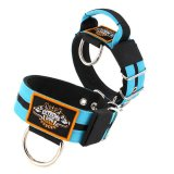 Double Turquoise custom dog collar 2 inch 5cm with handle extreme dog gear