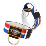 Dutch Flag custom dog collar 2 inch 5cm with handle extreme dog gear