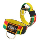 Rasta custom dog collar 2 inch 5cm with handle extreme dog gear