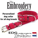 Fuchsia Standard or Personalized Embroidered Dog Collar 2 inch - 5cm