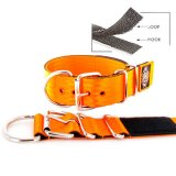 orange seat belt kennel keeper dog collar