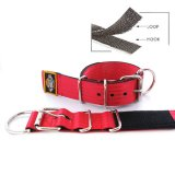 red seat belt kennel keeper dog collar