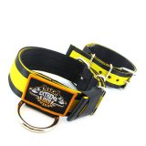 Puncher black yellow extreme dog gear collar 2 inch nylon 5cm width
