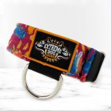 softshell custom 1 dog collar