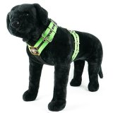 double stripe apple green dog harness