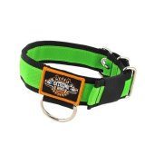 apple green nylon dog collar stripe