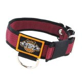 bordeaux nylon dog collar stripe