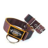 Custom Old School Seatbelt Dog Collar Brown Orange