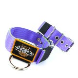 Custom Old School Seatbelt Dog Collar lavender lime