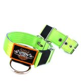 Custom Old School Seatbelt Dog Collar lime lavender