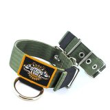 Custom Old School Seatbelt Dog Collar olive beige