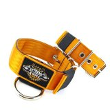 Custom Old School Seatbelt Dog Collar orange brown