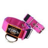 Custom Old School Seatbelt Dog Collar pink blue