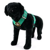 Dog harness 2 inch kelly green by extreme dog gear