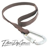 strong dog leash brown lead
