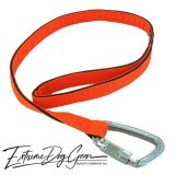 strong dog leash orange lead