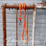 dog rope leash orange