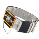 dog collar 2 inch grey have duty nylon 2 inch 5cm