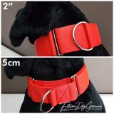 2 inch red martingale collar large breed