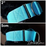 2 inch Turquoise Martingale Dog Collar
