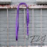 Multi Leash purple