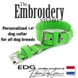 EDG dog collar personalized 1.6 inch apple green
