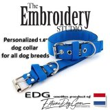 EDG dog collar personalized 1.6 inch blue